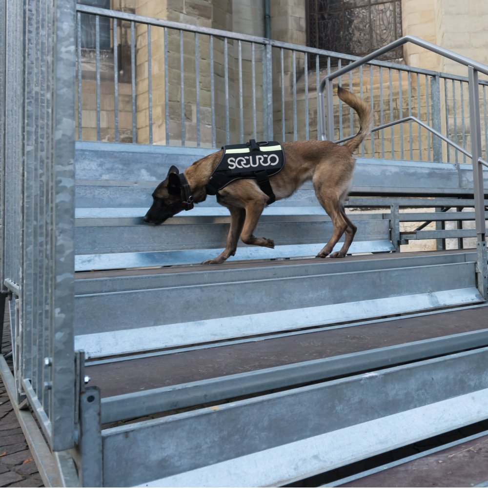 Securco Page: K9 Security